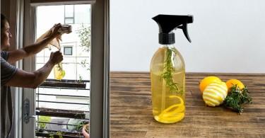 Spray-casero-de-lim-C3-B3n-y-romero-para-la-limpieza.