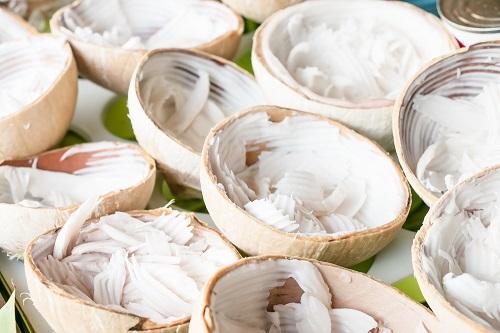 yogur vegano de coco