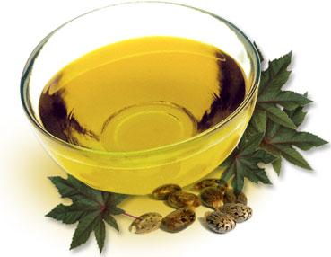 aceite de ricino semilla