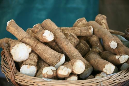 rábano picante vegetales perennes