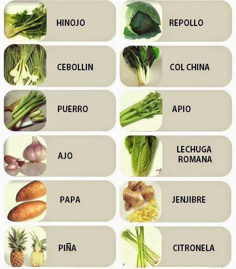 11 vegetales que puedes crecer de nuevo - Verduras lista de nombres ...