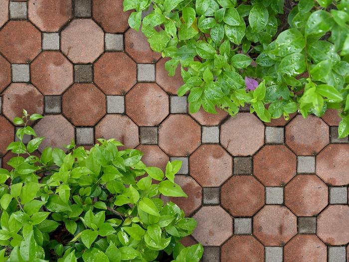 Ideas para diseñar un jardín con piedras