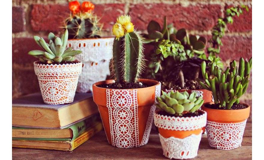 Qu plantas tener en un jard n con macetas vida l cida for Jardines en macetas