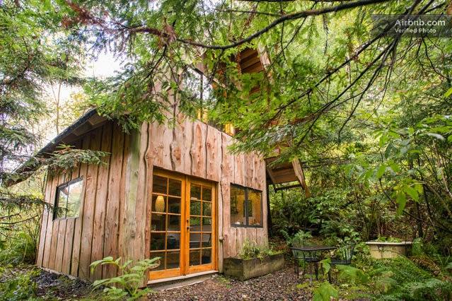 La casa de la selva vista desde afuera