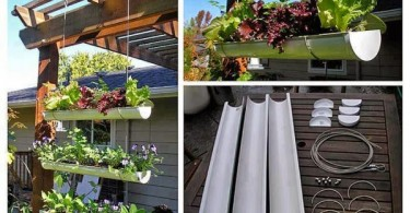 gutter-garden-e1347484678436