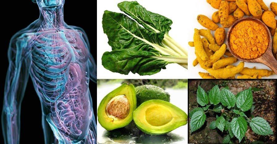 regeneración de tejidos