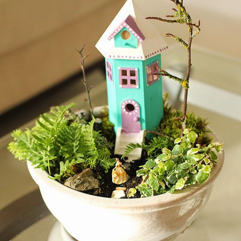 linda casita con jardn en miniatura en esta maceta plantas diversas de hoja pequea son el elemento verde que adorna