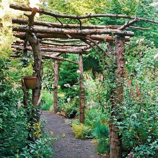 para darle un toque de jungla y boscoso a nuestro patio rstico