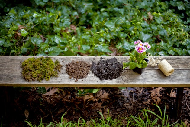 cmo hacer un jardn de kokedamas u plantas en bolas de musgo