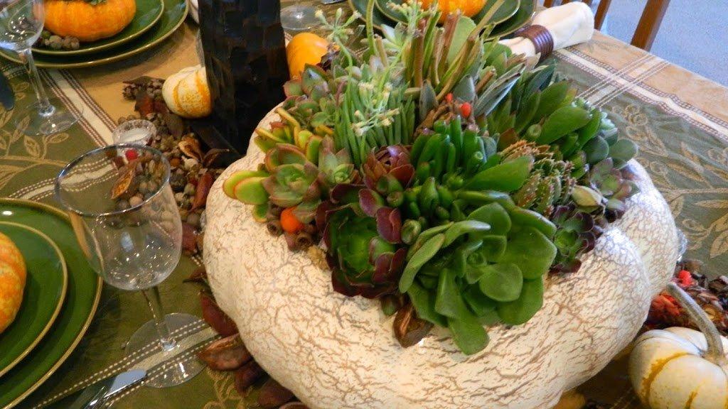 arreglo con plantas cactus