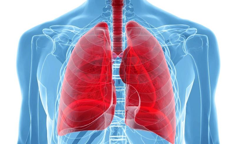 desintoxicar pulmones