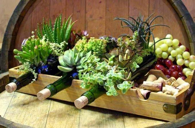 20 ideas para decorar un lindo jard n con suculentas for Matas de jardin