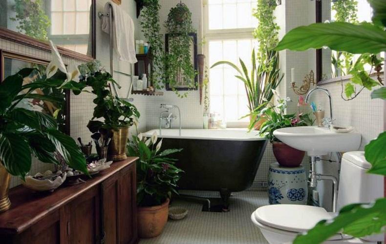 decorar un baño con plantas y detalles acogedores