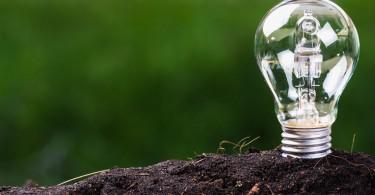 10 soluciones ecológicas para el hogar