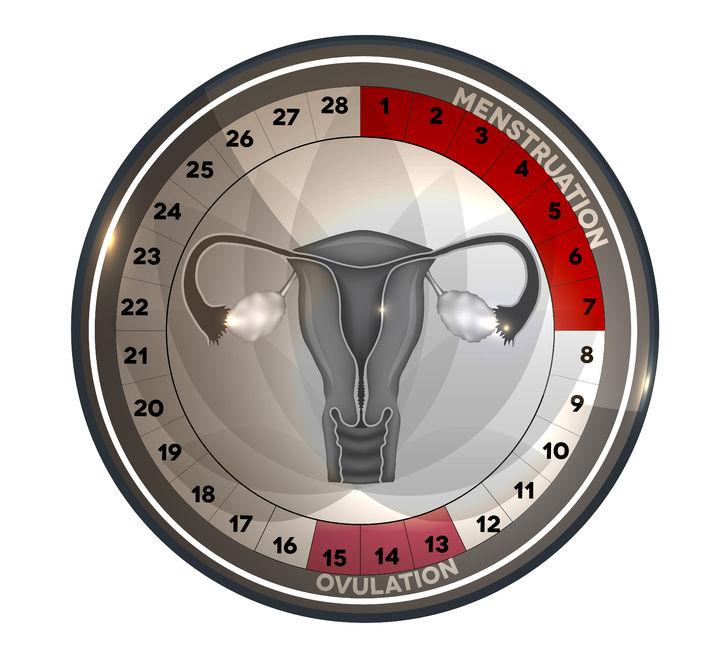 días fértiles para quedar embarazada