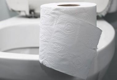 Inodoro toilet papel de baño