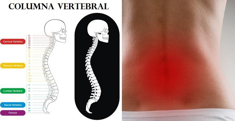 Cómo aliviar el dolor en la espalda baja o lumbar