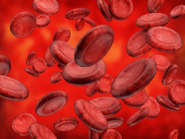 depurar la sangre