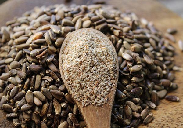 Beneficios de las semillas de cardo mariano