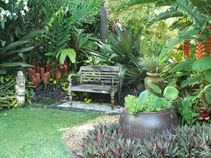 jardín de plantas tropicales
