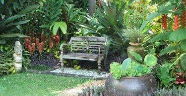 12 consejos para arreglar un jard n con flores for Como acabar con las hormigas del jardin