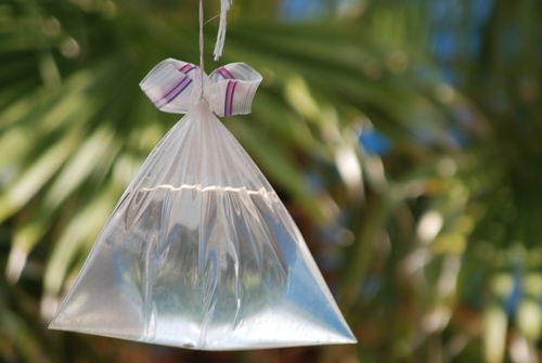 bolsa de agua para moscas
