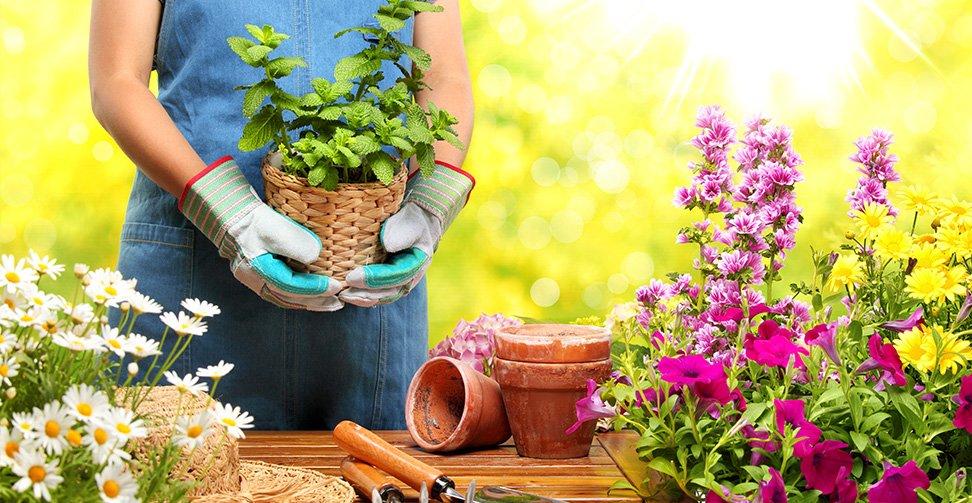 12 consejos para arreglar un jard n con flores for Articulos decorativos para jardin
