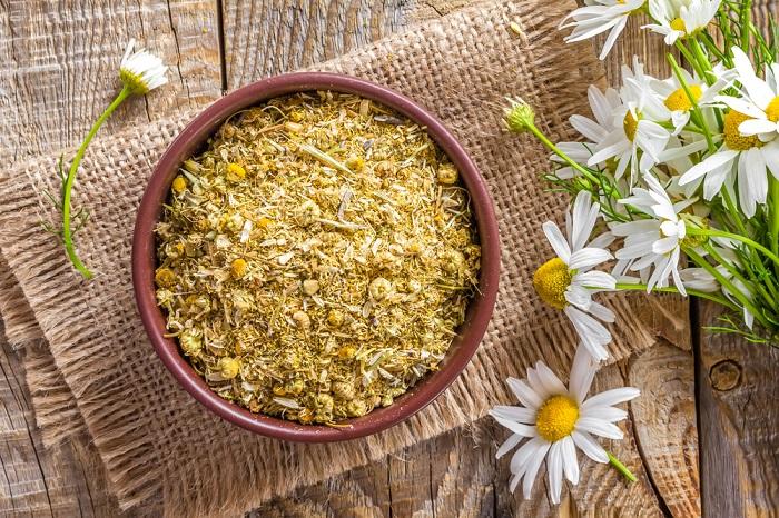 Manzanilla para aliviar síntomas de los broncoespasmos