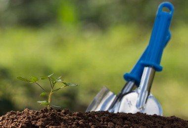 preparar la tierra para el cultivo