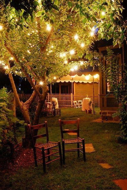luces árbol jardín decoración
