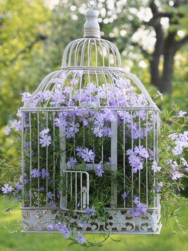 jaula con flores decorativos