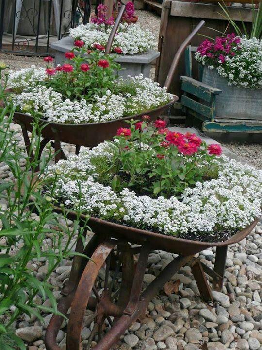 macetas de flores para decorar