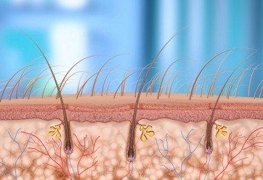 vitaminas biotina crecimiento del cabello