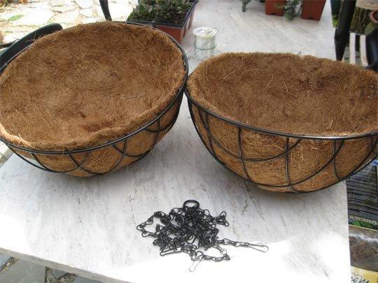 bolas de suculentas para el jardín