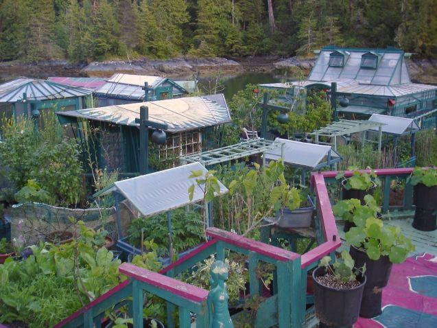 jardín flotante autosustentable