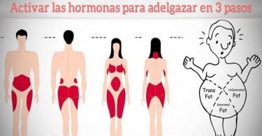 activar las hormonas