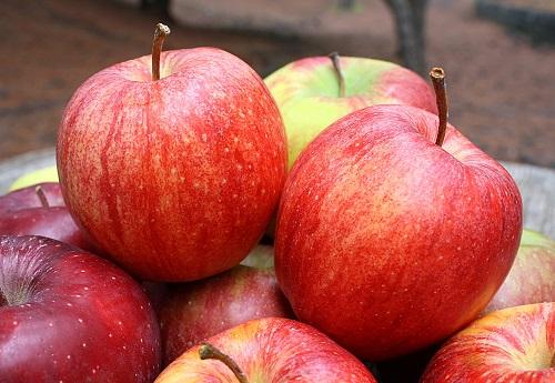 cáscaras de manzana beneficios para adelgazar