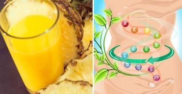 Jugos de frutas sin azúcar (2)