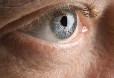 ojos visión vista