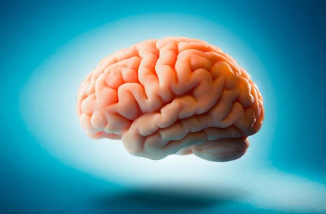 la diabetes daña al cerebro