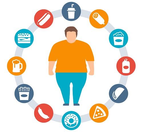 Resultado de imagen de obesidad