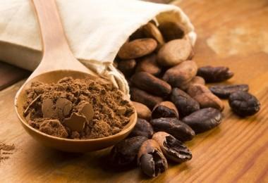 cacao para prevenir el envejecimiento cerebral