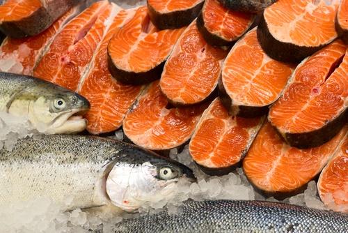 salmón comercial