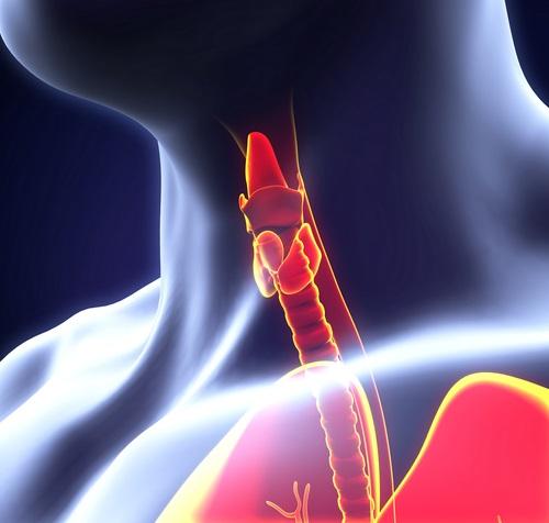señales hipotiroidismo