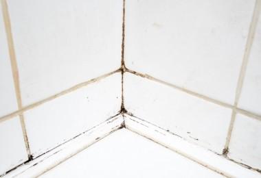 55 ideas de c mo aprovechar y ahorrar espacio en el hogar vida l cida - Limpiar azulejos bano moho ...