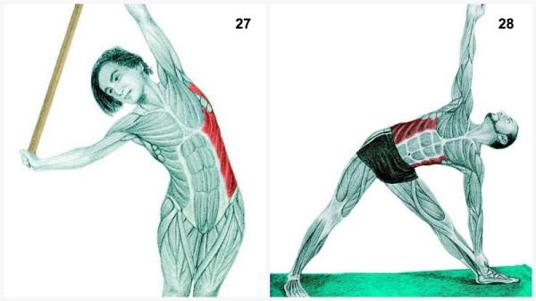 estiramientos musculares flexión con bastón