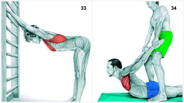 estiramientos musculares pectorales