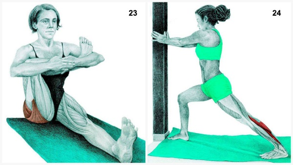 stretching exercises for flexibility