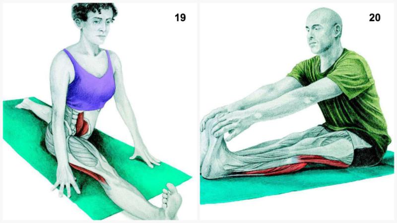 estiramientos musculares split frontal