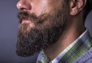 la barba hipster